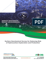 Surface Geochemical Survey_Overview 2019
