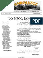 Chrząszcz - Styczeń 2007 (nr 10)