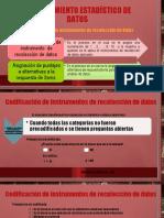 Codificación-de-instrumentos-de-recolección-de-datos