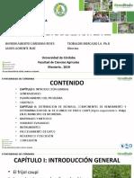 Requerimientos Hidricos Sustentacion.pptx