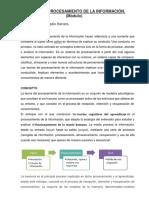 TEORÍA DEL PROCESAMIENTO DE LA INFORMACIÓN (2)