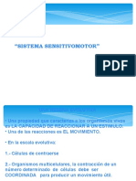 sistema_sentivo_motor