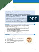 kelm302.pdf