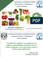 alimentos-orgc3a1nicos