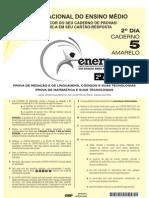ENEM 2010 - 2º Dia (2ª Aplicação, sem marcação do gabarito)