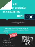 4 Fisiologia del lenguaje