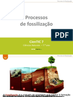 Fossilização - etapas e processos 2