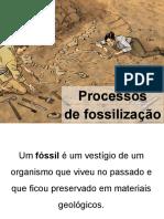 Processos de fossilização - 2