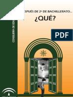 Y DESPUÉS DE 2º DE BACHILLERATO -QUÉ