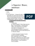Resumen del Miembro Superior (Brazo, Antebrazo y Codo).docx