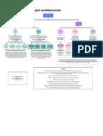 Actividad No. 1 Mapa mental Los modelos de gestión y las habilidades gerenciales.pdf