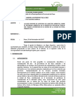 INFORME-DE-AUD-AMBIENTAL.docx