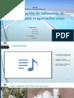 Presentacion de SIM (2).pptx