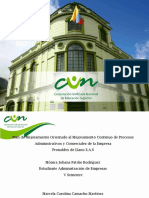 Plan_de_mejoramiento_Pronaldex_del_Llano_S.A.S.