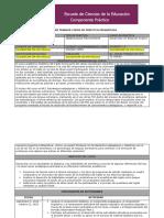 FORMATO 2_PLAN DE TRABAJO CURSO DE PRÁCTICA PEDAGÓGICA- DIDACTICS OF ENGLISH_NOMBRE COMPLETO
