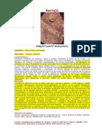 Biotita-Secundaria-en-Porfidos