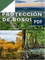 Bosques Del Ecuador