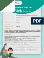 PROFESIONAL DE PLANEACIÓN DEL MODELO DE ATENCIÓN II.pdf
