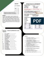masculin-au-feminin-exercice-grammatical-feuille-dexercices-fiche-peda_85114