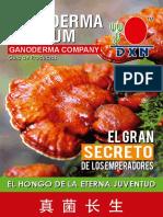CATALOGO ACTUALIZADO DXN 2020.pdf
