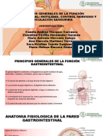 --FISIOLOGIA GASTROINTESTINAL--.pdf
