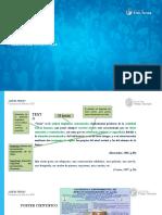 Texto-Coherencia-Cohesion (2)