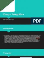 INCLUSION SOCIAL ACTIVIDAD 4.pptx