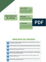 organigramas - CARACTERISTICAS DEL PROCESO