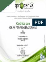 Inducción_Certificado del curso