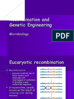 Recombination and Genetic Engineering