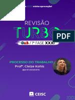 RT31 - Processo do Trabalho - Profª. Cleize Kohls.pdf