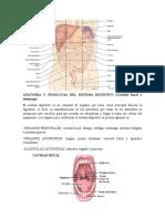 ANATOMIA_Y_FISIOLOGIA_DEL_SISTEMA_DIGEST.docx