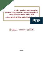 CRITERIOS REGRESO EMS 7_agt_20_.pdf