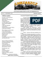 Chrząszcz - Październik 2007 (nr 19)