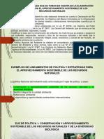 Ejemplo de lineamientos de política y estrategias.pdf