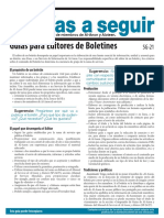 SG21 Guías para Editores de Boletines