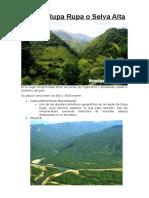 Región Rupa Rupa o Selva Alta