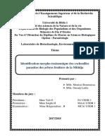 32 M.MP.pdf