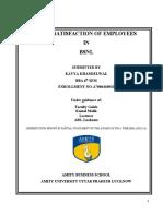 210801978-Dissertation-Report-on-Job-Satisfaction.docx