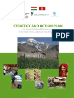 PALM Strategy-Action 2010