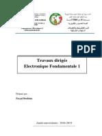 TD-ELNF1 (2)