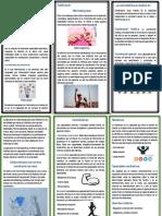 Evidencia 6 Brochure Interactivo Diego Novoa