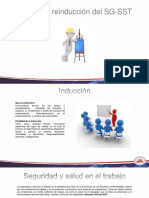 Induccion-y-reinduccion-del-SG-SST.pdfgaray.pdf