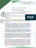Ordenanza N° 006-2019-MDPN