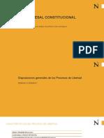 DPC DISPOSICIONES GENERALES, HABEAS CORPUS Y HABEAS DATA