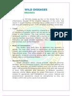 WILD written report