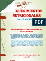 YUDITH HUAMAN BENDEZU REQUERIMIENTOS NUTRICIONALES -convertido