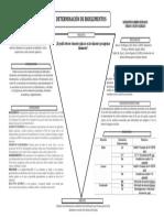 Determinación de Bioelementos Final.docx
