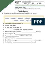 FICHA PARÓNIMAS