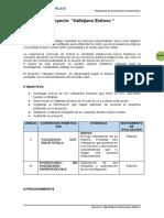 PROYECTO DE IDENTIDAD VALLEJIANA.docx